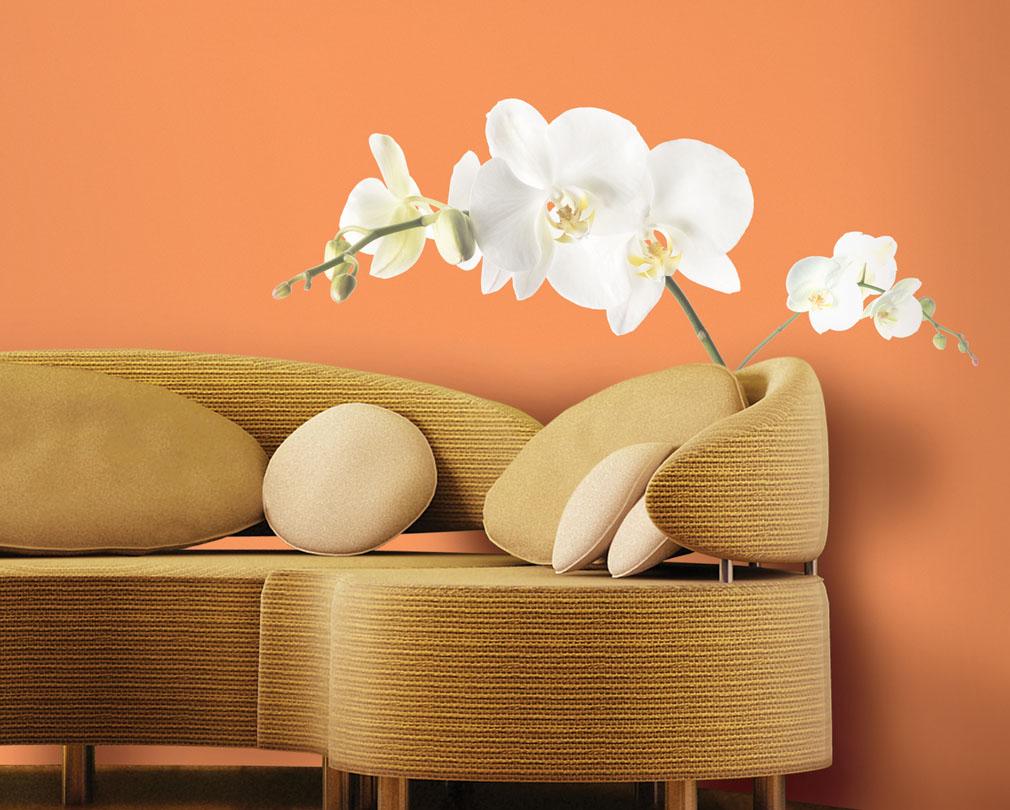 Znalezione obrazy dla zapytania http://www.roommates.com.pl/oferta_produktowa/dekoracje_dla_domu_i_biura/RMK1315GM