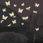 Motyle (świecą w ciemności) - 99,00 zł